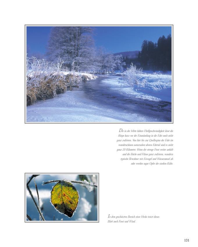Wittgensteiner Land - Winter